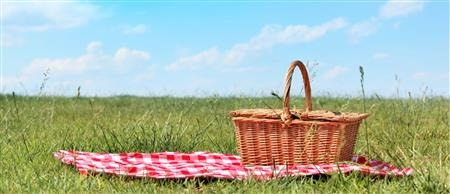 PICTURE OF A PICNIC BASKET