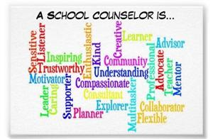 school counselor is
